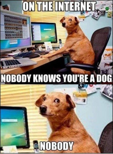 lolheaven com on the internet nobody knows you re a dog nobody